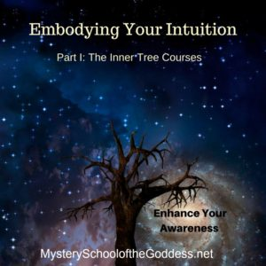 Embodying Your Intuition – Part 1 of the Inner Tree Courses with Maura Torkildson {OPEN}